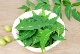 5-ways-to-use-neem-for-beauty