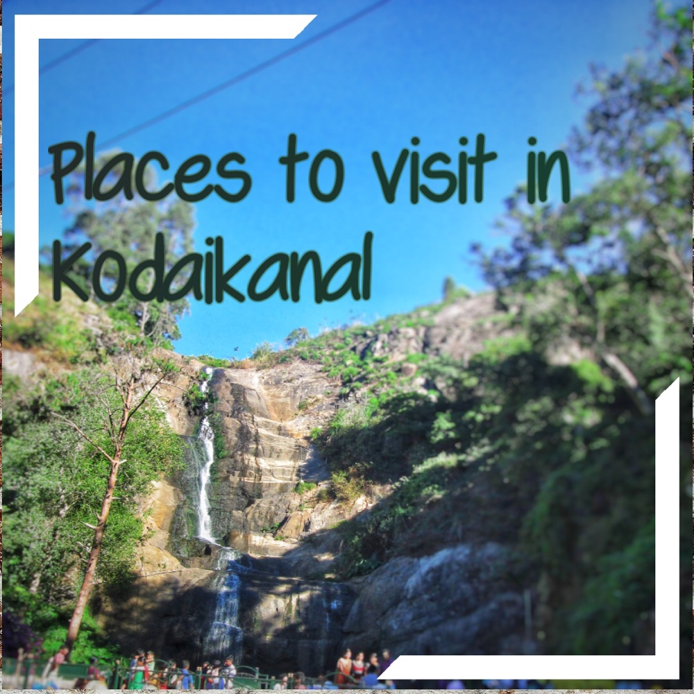 10-places-to-visit-in-kodaikanal